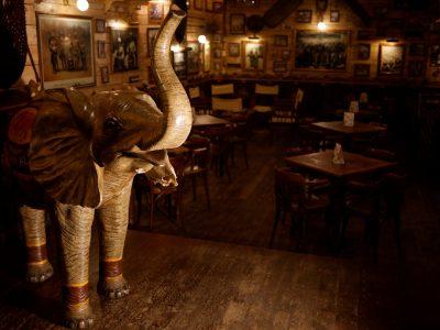 elefanteprueba